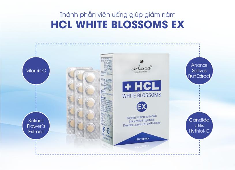 tri-nam-Sakura-HCL-White-Blossoms-EX