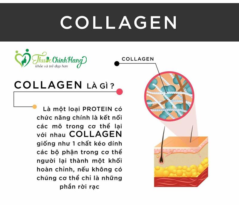 nen uong collagen trong bao lau